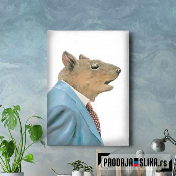 Siva veverica