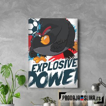 Explosive Power