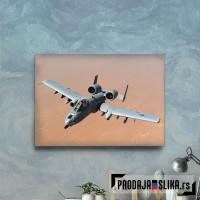 A10 Hunderbolt Warthog