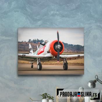 Airplane Runaway