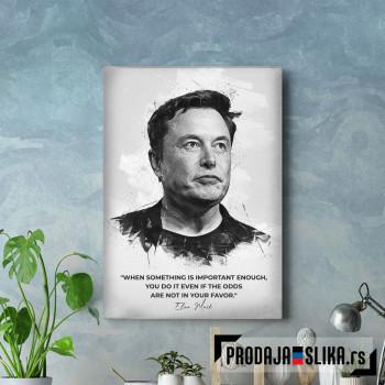 Elon Mask citat