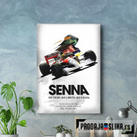 Ayrton Senna Low Poly