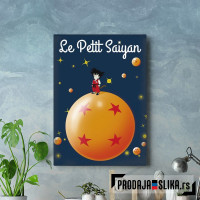 Le Petit Saiyan