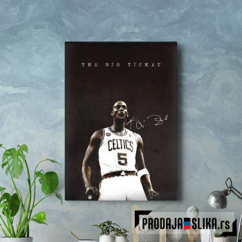 NBA Basketball Garnet