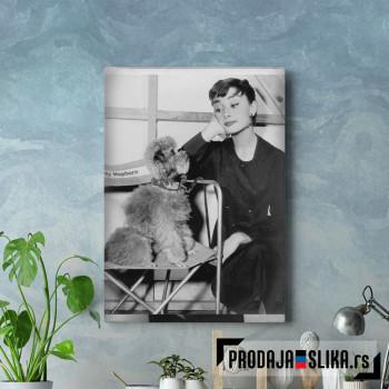 Audrey Hepburn With a Dog