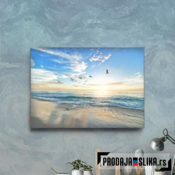 Beach Ocean With Seagulls
