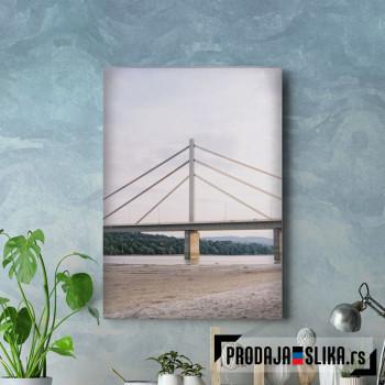 Most U Novom Sadu